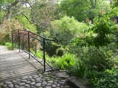 Alpinium im Botanischen Garten